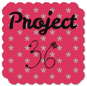 Project 36 Update